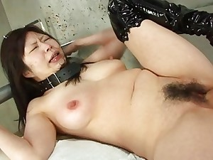 Collared Asian endures rough fingering and a nippl